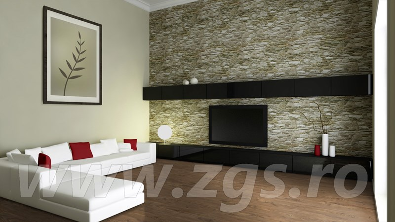 Swiss Infinity Rome D 3736 CT (3)